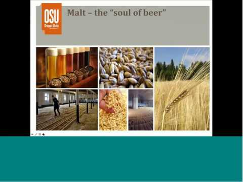 Introduction to Origins of Beer Flavors and Styles Webinar