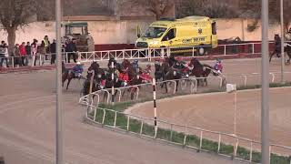 Vidéo de la course PMU PREMI HACHA DE PRE