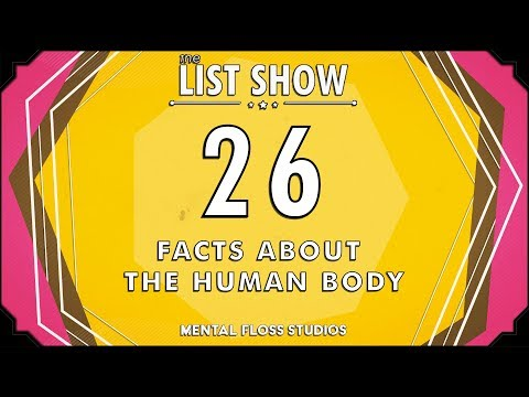 Only Humans Have Chins and More Facts About the Human Body | Mental Floss List Show | 532