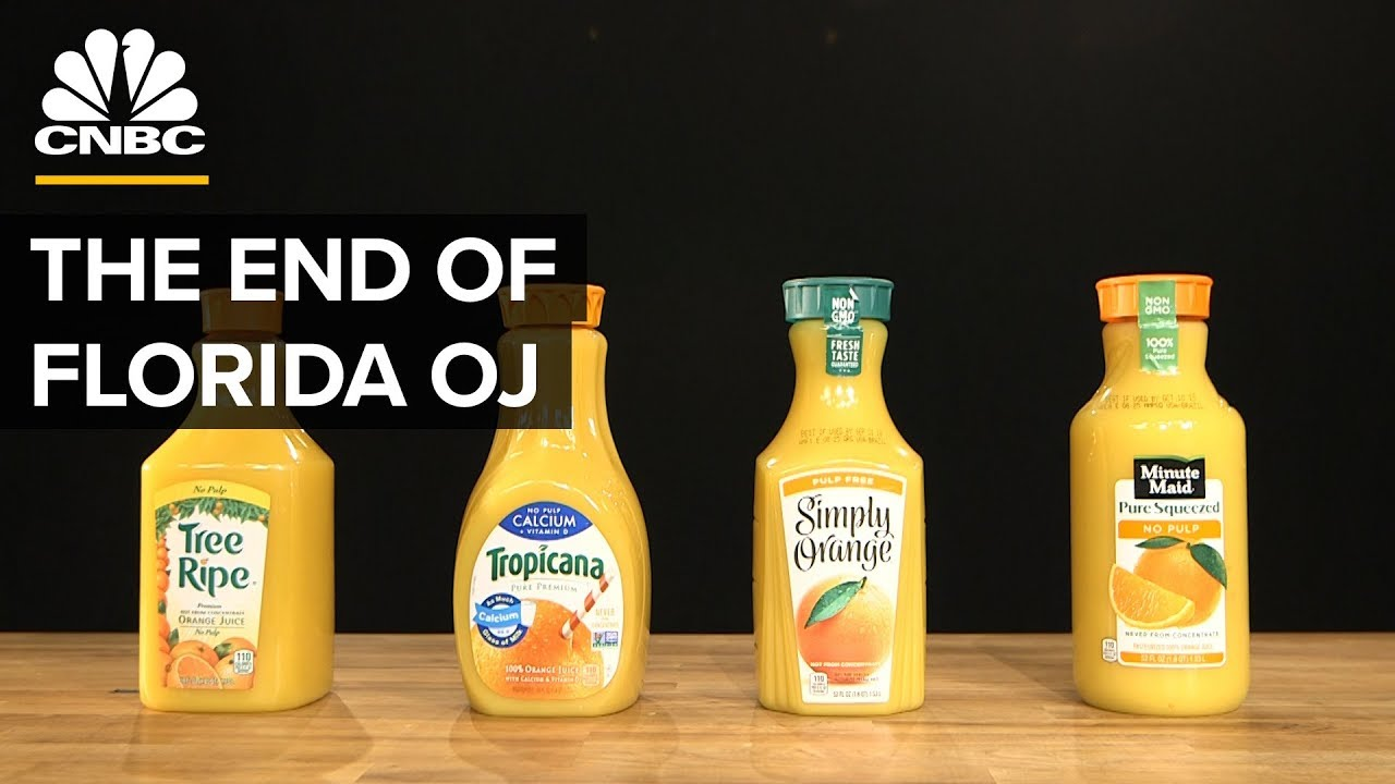 Why Most Orange Juice Comes From Brazil Not Florida Youtube