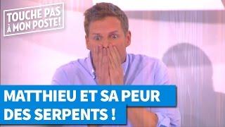 Matthieu Delormeau terrorisé par des serpents !