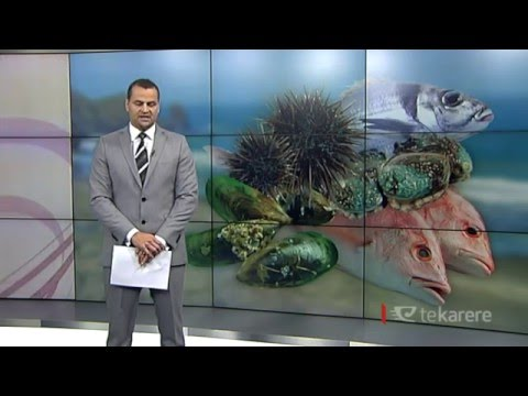Kermadec sanctuary 'extinguishes' Māori fishing rights - TOKM