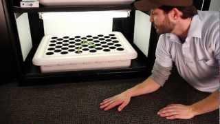 Hydroponic Grow Box | Grow Box By Supercloset