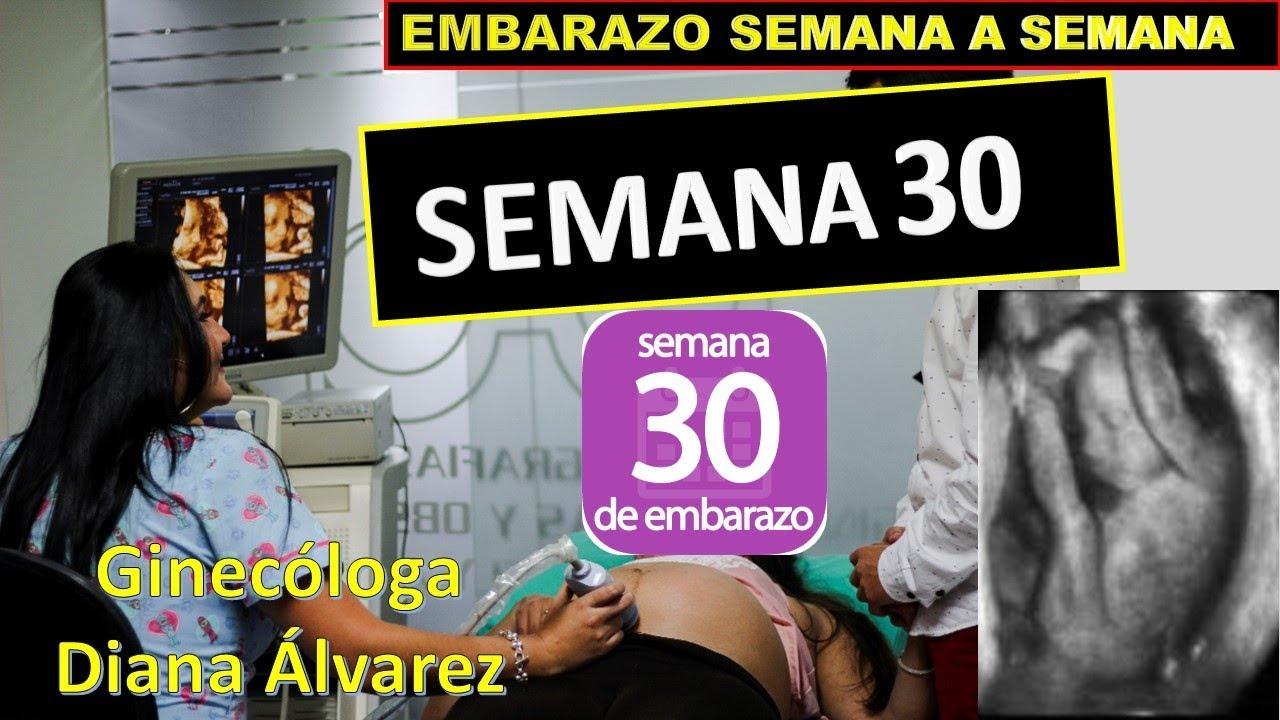 ffd9dfe26 SEMANA 30