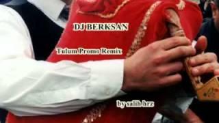 dj berksan - tulum remix.mp4
