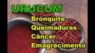 Descubra os Beneficios do Urucum