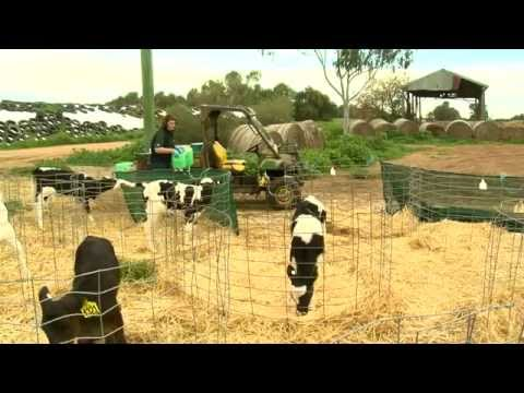 Food Production in the Murray Darling Basin