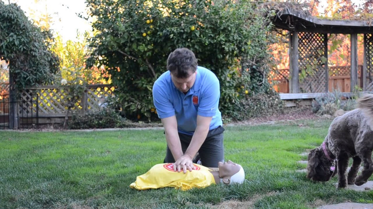 Bls Cpr Renewal In San Francisco Bls Adult Cpr Class Youtube