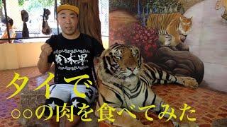 タイ・シラチャにあるトラだらけの動物園「タイガーズー」で、ワニのお...