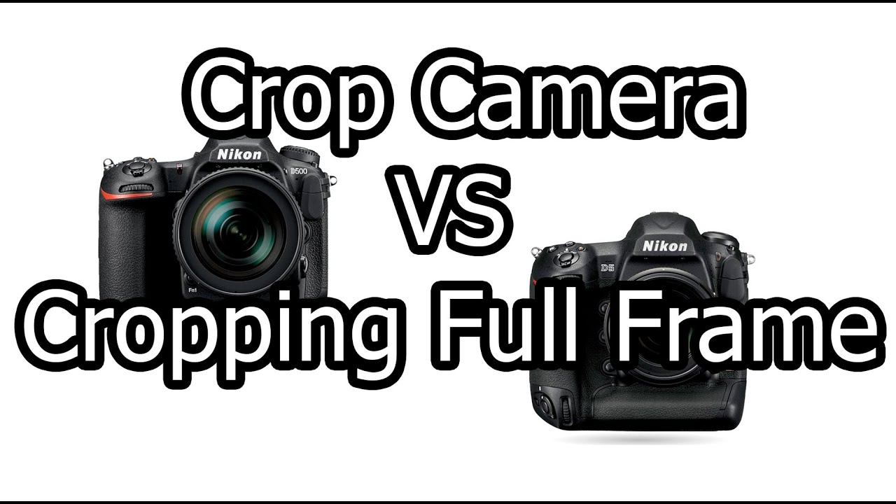 Using A Crop Camera vs. Cropping Full Frame - YouTube