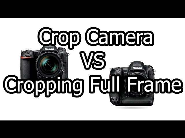 Nikon DX camera vs. cropping or putting a teleconverter on a full ...