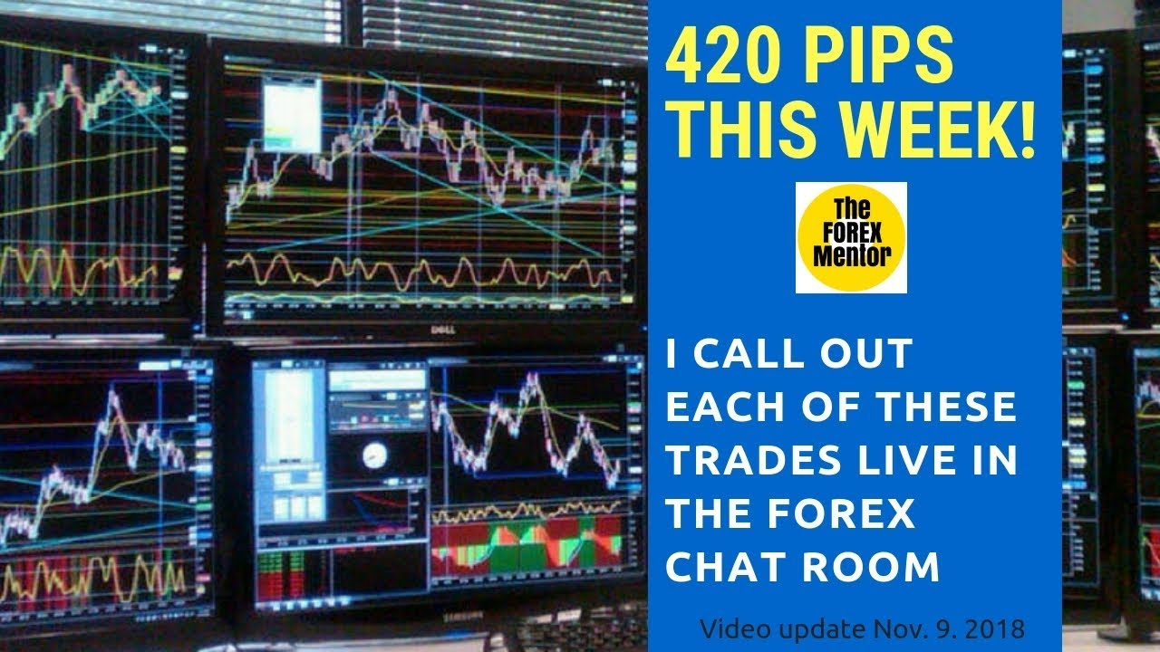 Forex chat room delfinado leah n&md investment corp