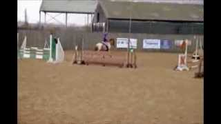 Flintstones Pebbles - Onley Arena Eventing - 90cm