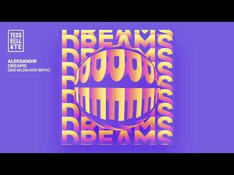 "Aleksandir ""Dreams"" (Seb Wildblood Remix)"