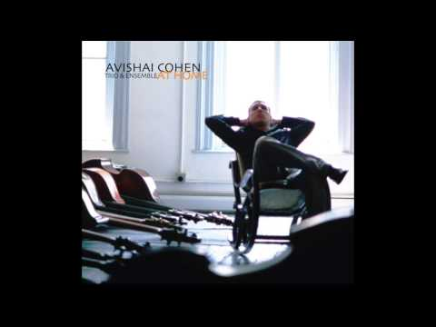 Avishai Cohen - Remembering