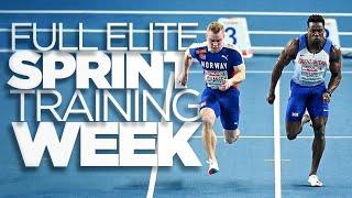 Elite Sprint Training Week | Road To 20 ³