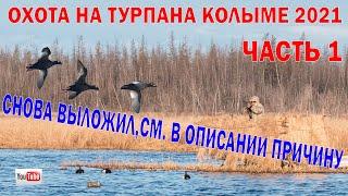 ОХОТА НА ТУРПАНА НА КОЛЫМЕ 2021 ЧАСТЬ 1 Охота на уток в Якутии DUCK HUNTING IN SIBERIA
