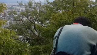 Pelajar dijepang suara merdu Harmonika lagu Indonesia Pusaka