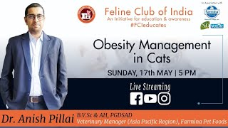 Webinar#7:Obesity Management in cats in Association with Farmina Pet Foods