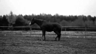 Leona Lewis - Hurt - Music Video