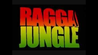 Drum&bass / Hardtek Mix / Raggajungle / Reggae