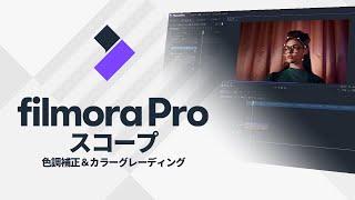カラーツール・スコープ Wondershare FilmoraPro