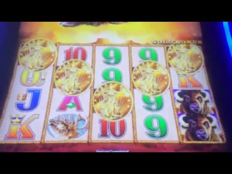 canplay casino reviews Online