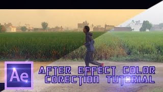 after effect basic color correction tutorial just 5 minute