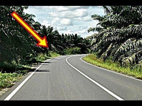 PERBATASAN INDONESIA MALAYSIA TERBARU 2016 - DI KALIMANTAN , WOW HALUS MULUS  !!