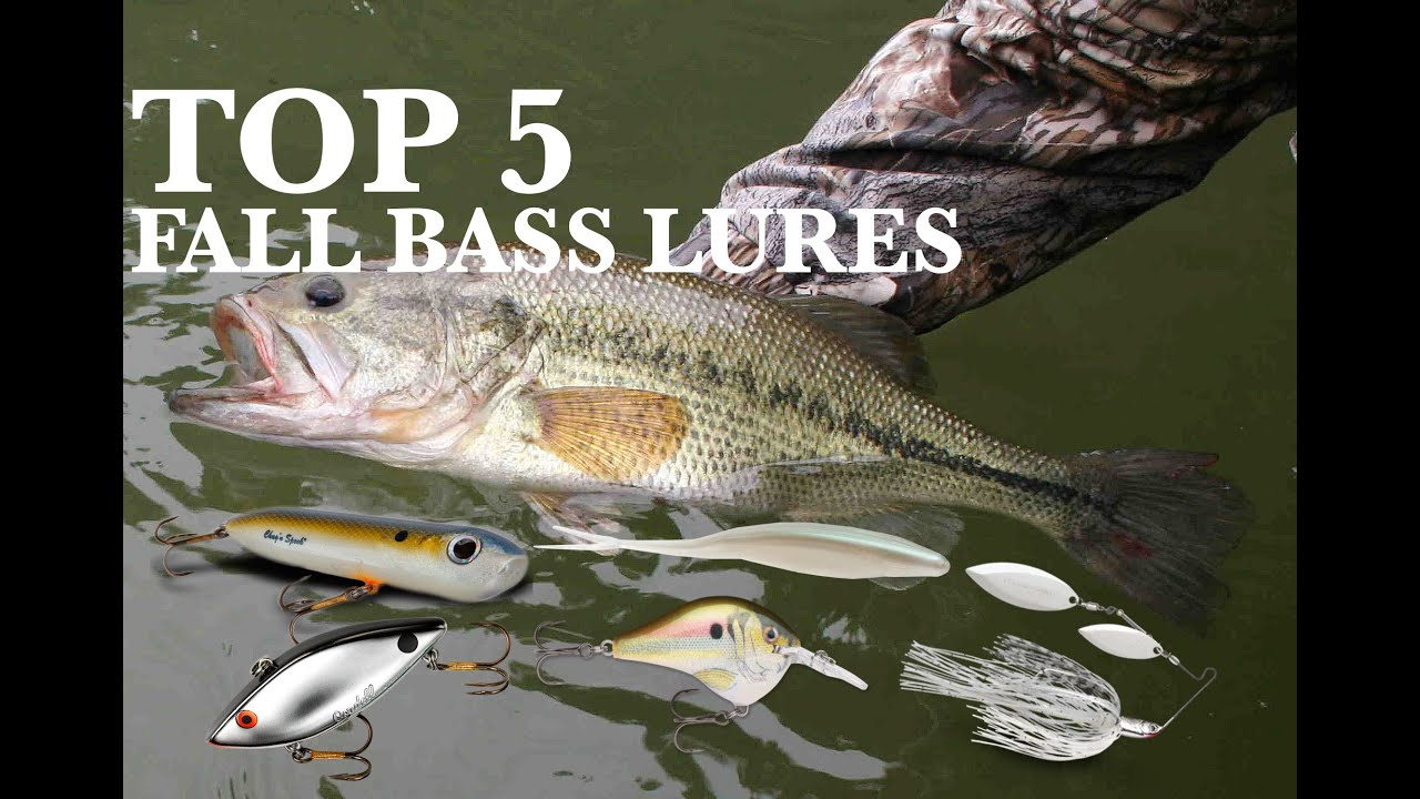 Top 5 Fall Bass Fishing Lures