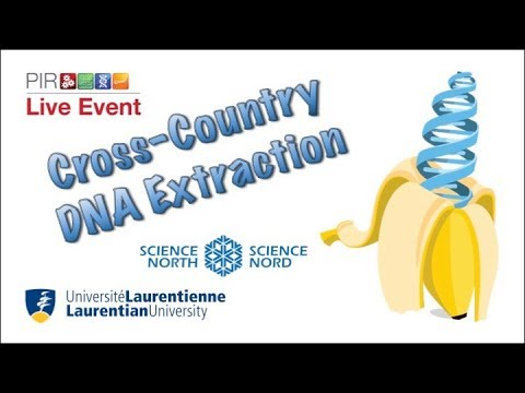 PIR Live Event - Fruit DNA Extraction