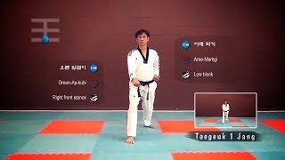 Best Way to Learn All Essential Korean Terminology in Taekwondo Poomsae Taegeuk  | TaekwonWoo