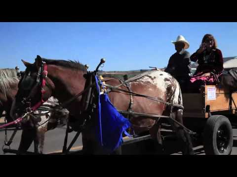2015 Navajo Protest Parade March and Protest