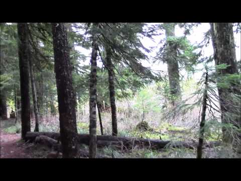 Oregon Camper goes Missing at Bigfoot Sighting Hot Spot