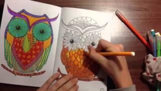 Раскраска- Антистресс . Звери и птицы. Раскрашиваем вместе .