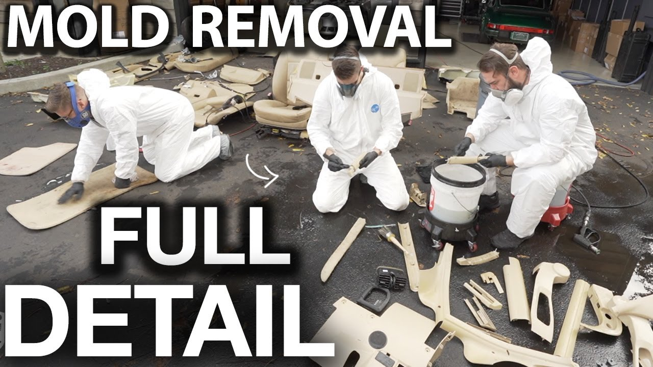 Disgusting Bio-Hazard BMW Full Interior Removal and Detail BMW 5 Series