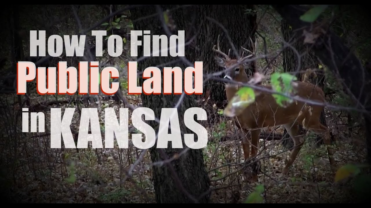 How to Find Public Hunting Land In Kansas