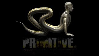 Primitive Functional Movement® - Health & Performance Bodyweight Training System