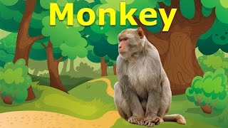 Learning zoo animals for children | Wild animals names in the zoo for kids to learn