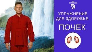 Упражнение для здоровья почек (бесплатный урок)