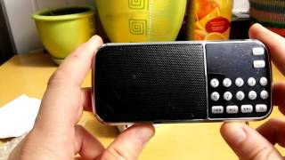 iCHENLE L-088 Mini Speaker Portable MP3 / FM Radio-Everbuyingenet