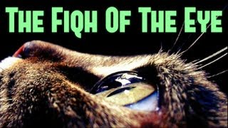 The Fiqh Of The Eye ᴴᴰ ┇ Must Watch ┇ The Daily Reminder ┇