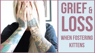 grieving-the-loss-of-a-foster-kitten-6-tips