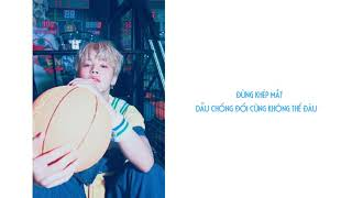 Video  video lyric & vietsub  PIED PIPER - BTS (방탄소년단) download MP3, 3GP, MP4, WEBM, AVI, FLV Juni 2018
