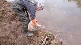 ловим рыбу мы сетями.
