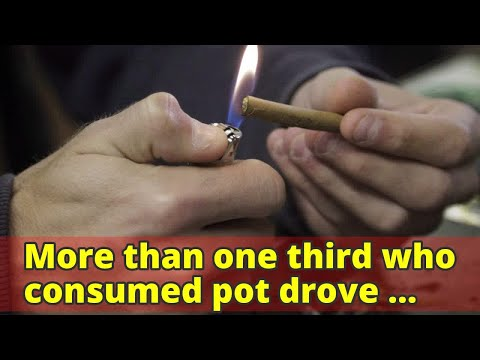 More than one third who consumed pot drove within two hours: Health Canada survey