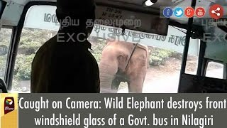 Caught on Camera: Wild Elephant destroys front windshield glass of a Govt. bus in Nilagiri