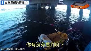 【橋墩_鐵管釣法】Taiwan Special Fishing Technolog黑鯛、石斑、浮磯釣、沉底、金寶螺、雞肝釣法、雞腸釣法、泡棉船、筏釣、沙梭 thumbnail