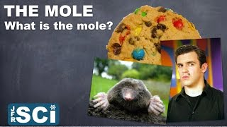The Mole and Molar Mass: What is the Mole?