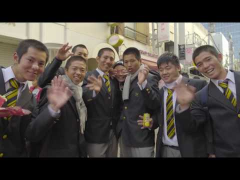 Living & Working in Japan
